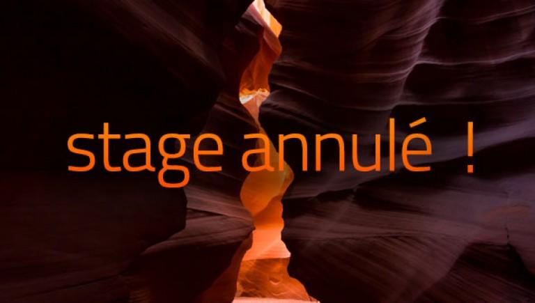 actu_stageannule